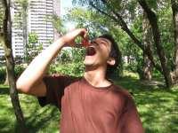 Sultan Syed, Watermelon Smash, 2011